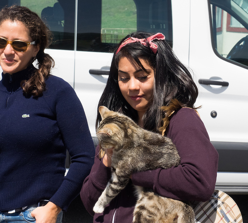 Vivian adopts the cat at Pacheco Ranch