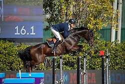 Jönsson Fredrik, SWE, Cold Play<br /> FEI Jumping Nations Cup Final<br /> Barcelona 2019<br /> © Hippo Foto - Dirk Caremans<br />  03/10/2019