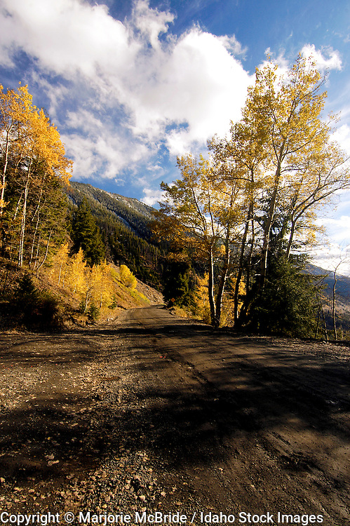 Autumn on Forest Rd 51 or Trail Creek connecting Sun Valley to Mackay Idaho.