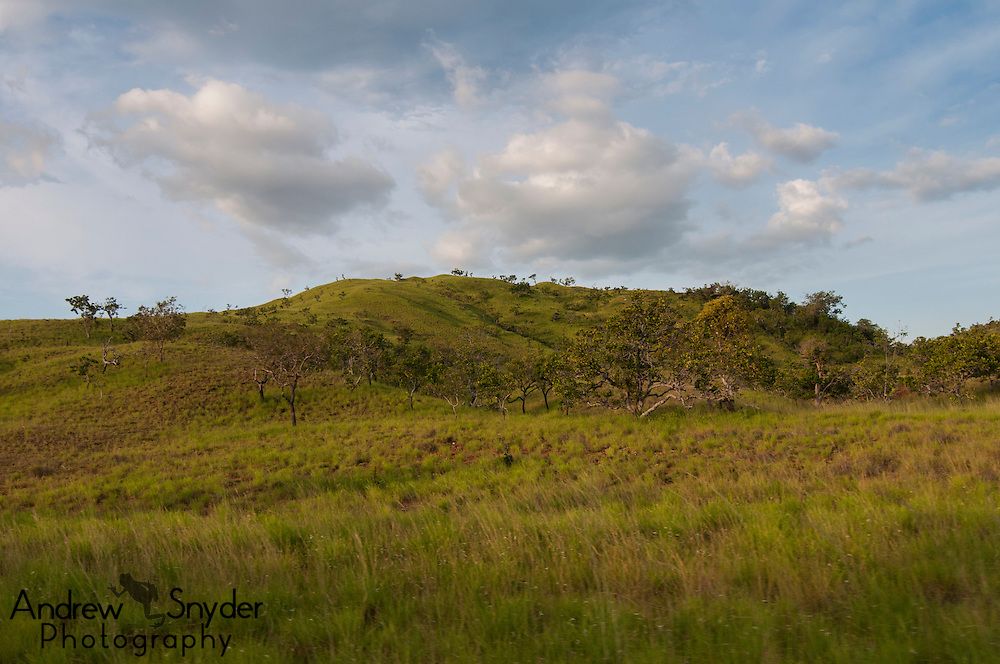 The rolling hills of the Rupununi Savannah, Guyana