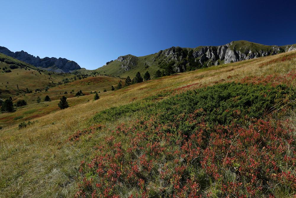 Zelengora mountain, Sutjeska National Park, Bosnia and Herzegovina.