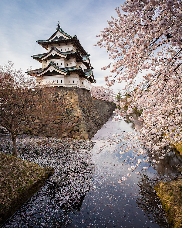 When spring comes to Hirosaki, the landscape around the castle becomes the typical landscape of Japanese legend