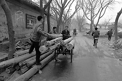 Men recycling old timber beams taken from a demolished house in a Beijing hutong