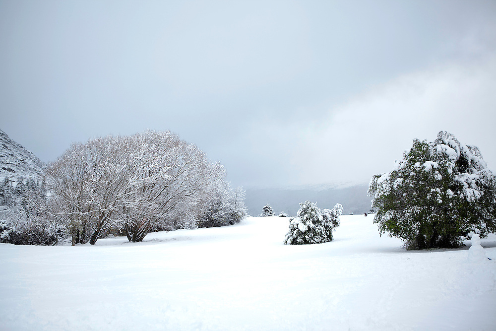Early season snow covers the ground and trees, Queenstown, New Zealand, Monday, May 26, 2014. Credit:SNPA / Teaukura Moetaua
