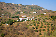 View of countryside farms near the Moorish village of Comares, Malaga province, Spain