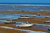 Indonesie. Bali. ile de Nusa Lembongan. Culture des algues. // Indonesia. Bali. Nusa Lembongan island. Alga cultivation.