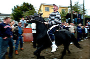 Ballinasloe Horse Fair........Europe's oldest Horse Fair draws the crowds to Ballinasloe,Co Galway,Ireland in the first week of October . Photograph by Eamon Ward