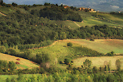 Tuscan countryside<br /> <br /> Available sizes:<br /> 12&quot; x 18&quot; print <br /> 12&quot; x 18&quot; gallery wrap<br /> See Pricing page for more information.