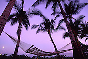 Hammock at moonrise<br />