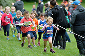 20140914 Athletics Wellington - Kids Cross Country