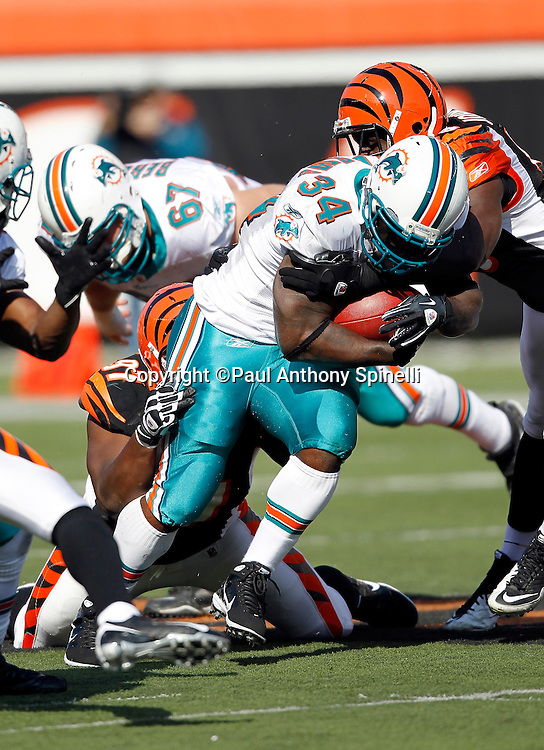 Miami Dolphins running back Ricky Williams (34) runs the ball during the NFL week 8 football game against the Cincinnati Bengals on Sunday, October 31, 2010 in Cincinnati, Ohio. The Dolphins won the game 22-14. (©Paul Anthony Spinelli)