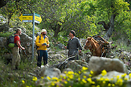 Bozburun, Turkey, March 2014. Hikers greet a man and his horse loaded with firewood on the Carian Trail section of Bayir to Taslica. The Carian Trail runs through pine scented forests along the coastal mountains of Western Turkey and is littered with ancient ruins, secluded coves with turquoise waters and little villages. more than 800km of ancient roads, shepherd paths and forest trails form Turkey's longest hiking trail.  Photo by Frits Meyst / MeystPhoto.com