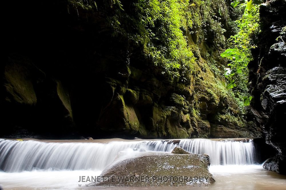 Las Cuevas de los Tayos, a cavern in the province of Napo, Ecuador, where endangered birds make their nests.