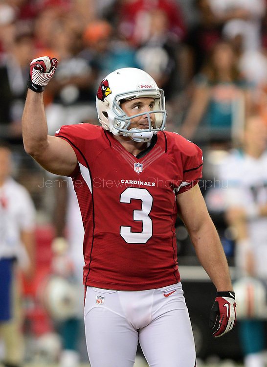 Sept. 30, 2012; Glendale, AZ, USA; Arizona Cardinals kicker Jay Feely (3) reacts at University of Phoenix Stadium. Mandatory Credit: Jennifer Stewart-US PRESSWIRE.