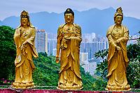 China, Hong Kong, Kowloon, monastère des dix mille Bouddhas, // China, Hong Kong, Kowloon, Ten Thousand Buddhas Monastery
