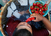 HANGZHOU, CHINA - JULY 20: <br /> <br /> Tourists sitting in the ice buckets eat peppers in the fountain during a competition at Song Dynasty Town on July 20, 2016 in Hangzhou, Zhejiang Province of China. As the ground temperature reached 40 degrees Celsius in Hangzhou, tourists competed eating peppers while sitting in the ice buckets to feel hot and cool at the same time in the Song Dynasty Town scenic area<br /> ©Exclusivepix Media