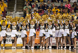 Magnolia cheerleaders cheer during the Class A championship game at the Charleston Civic Center.