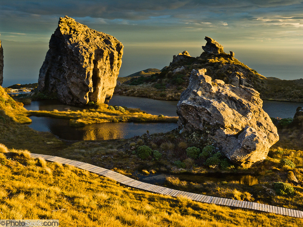 Sunset illuminates the boardwalk through curious tors and tarns (crags and ponds) on Hump Ridge, a track (trail) for trampers (hikers and trekkers) in Fiordland National Park, South Island, New Zealand. Sandstone and mudstone comprises the craggy rocks. In 1990, UNESCO honored Te Wahipounamu - South West New Zealand as a World Heritage Area.
