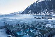 Alaska SeaLife Center i Seward, Alaska, där den finska marinbiologen Tuula Hollmen forskar på klimatförändringarnas påverkan på det marina livet i området. Under denna tid har hon med egna ögon kunnat se hur glaciärerna smälter och ekosystemen rubbas.
