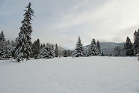 Fresh snow on the Whistler Golf Course, Whistler, BC