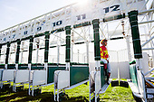 A day at the horse races at the Zarzuela Hippodrome
