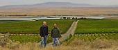 Sagemoor Vineyards