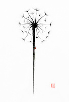 Beautiful dandelion seed head with a charming red lady bug. Minimalistic abstract oriental style illustration, Japanese Zen Sumi-e painting black ink on white rice paper background.