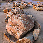 Cracked Eggs At Dusk - Bisti Badlands - New Mexico