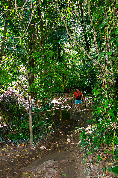 Turista na trilha para a piscina natural do Cachadaço, Vila de Trindade - Paraty- RJ, 12/2013.