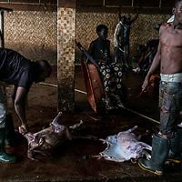 The main slaughterhouse in Maiduguri.