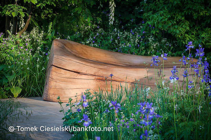 A carved wooden log bench surrounded by planting of mixed perennials and grasses including Carex pendula, Ranunculus arvensis, Iris sibirica, Geranium, Astrantia and Digitalis