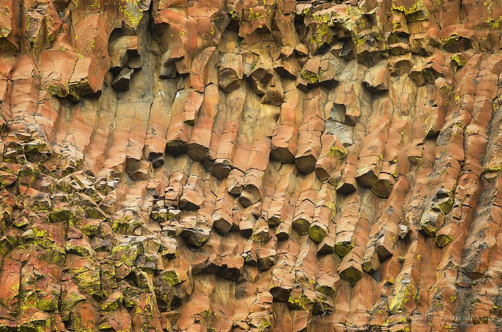 Basalt columns, Moses Coulee Columbia Plateau Washington