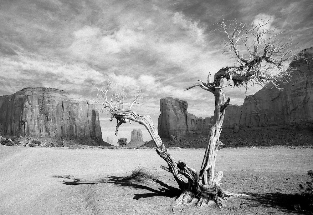 An iconic image of the American Southwest