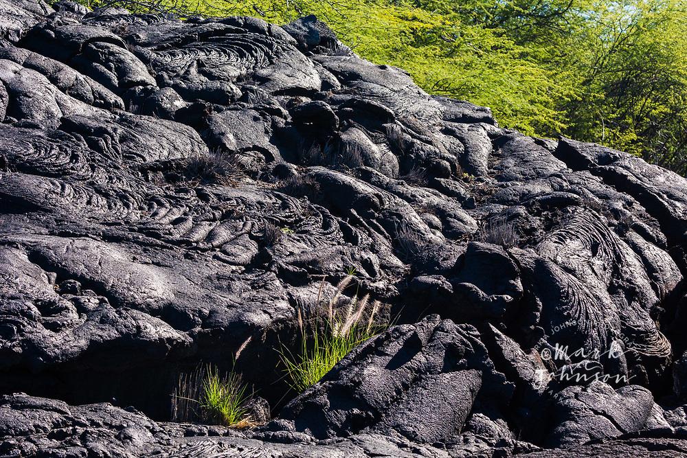 An old lava flow at Kiholo Bay, Big Island (Hawaii Island), Hawaii
