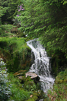 Small waterfall in Wicklow Ireland
