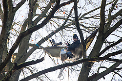 Harefield, UK. 21 January, 2020. An activist lying in a hammock suspended high up in a tree at the Save the Colne Valley wildlife protection camp enjoys a pot of breakfast porridge. Activists seeking to protect ancient woodland threatened by the HS2 high-speed rail link continue to occupy both the roadside and woodland sites of the camp having retaken it from bailiffs acting on behalf of HS2 on 18th January. 108 ancient woodlands are set to be destroyed by HS2.