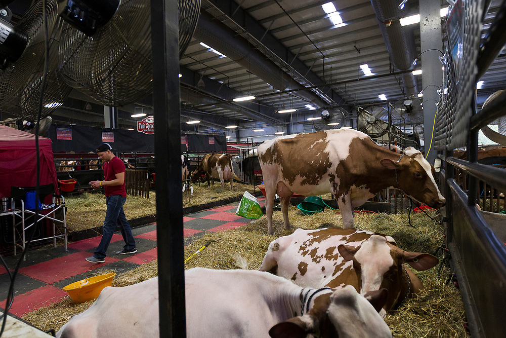 An expo attendee walks through the exhibition hall during the World Dairy Expo in Madison, Wisconsin, U.S., October 3, 2018.  REUTERS/Ben Brewer