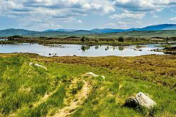 Loch Ba, Rannoch Moor, Highlands of Scotland<br /> <br /> (c) Andrew Wilson | Edinburgh Elite media