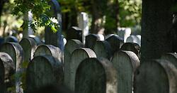 THEMENBILD - Herbst im Wiener Zentralfriedhof. Das Bild wurde am  14. Oktober 2012 aufgenommen. im Bild Gräber im Jüdischen Friedhof // THEME IMAGE FEATURE - Autumn in Vienna at viennese central cemetery. The image was taken on october, 14th, 2012. Picture shows graves of the jewish cemetery, AUT, EXPA Pictures © 2012, PhotoCredit: EXPA/ M. Gruber