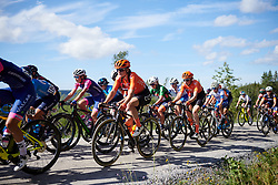 Marta Lach (POL) in the bunch during Ladies Tour of Norway 2019 - Stage 4, a 154 km road race from Svinesund to Halden, Norway on August 25, 2019. Photo by Sean Robinson/velofocus.com