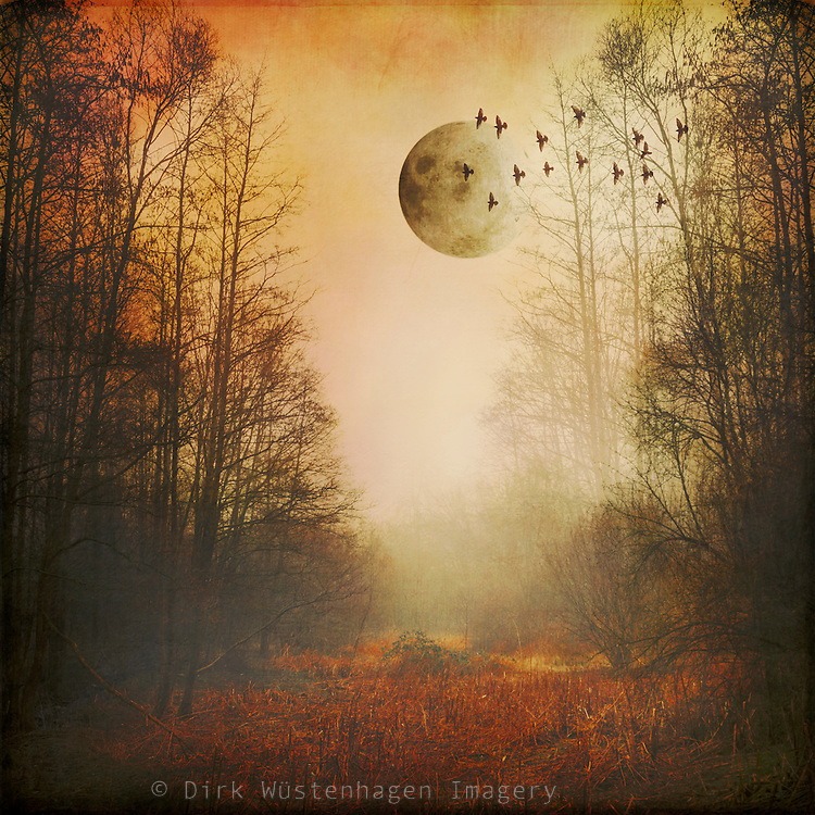 Surreal landscape on a misty morning with full moon<br />