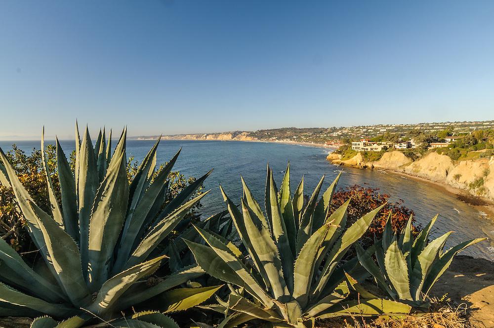 California, San Diego, La Jolla