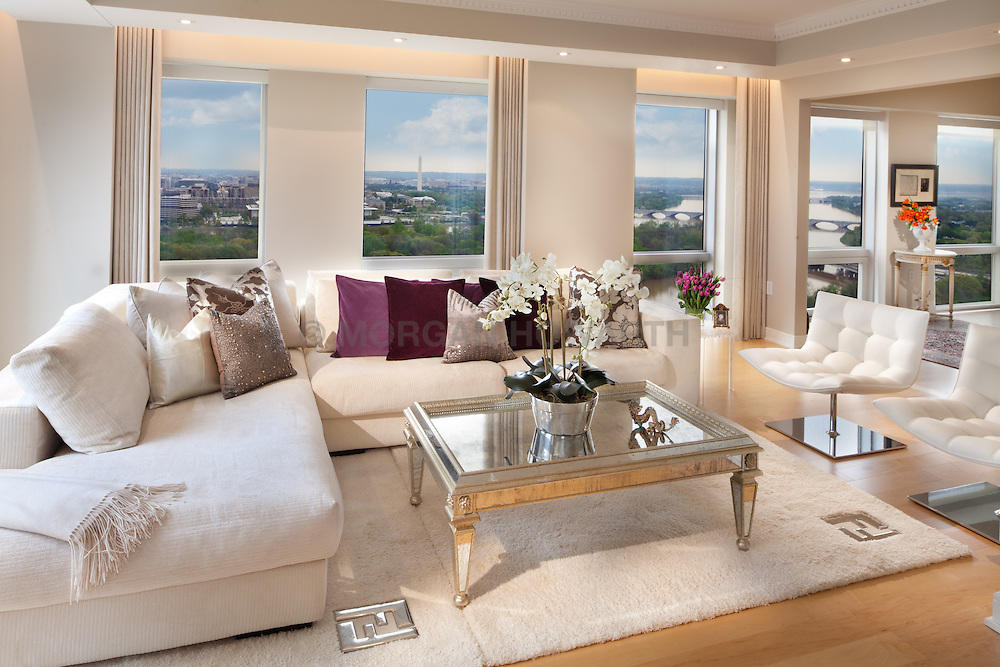 1111 19th Street North Arlington Virginia designer Jeff Aksiezer condominium Home Living Room