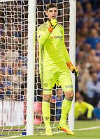 Football - 2016/2017 Premier League - Chelsea V West Ham United. <br /> <br /> Thibaut Courtois of Chelsea at Stamford Bridge.<br /> <br /> COLORSPORT/DANIEL BEARHAM