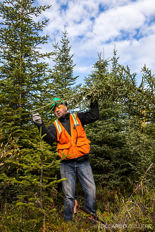 Corporate photography. Forestry worker. 2013.