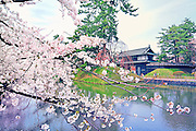 The main gate of Hirosaki castle in the spring time. Wonderful cherry blossoms flank the moat.<br />