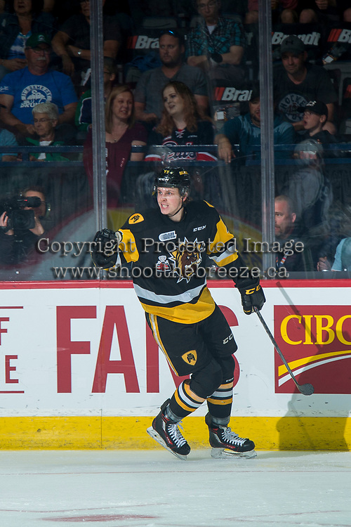 REGINA, SK - MAY 21: MacKenzie Entwistle #44 of Hamilton Bulldogs celebrates a first period goal against the Swift Current Broncos at the Brandt Centre on May 21, 2018 in Regina, Canada. (Photo by Marissa Baecker/CHL Images)