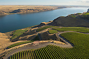 Aerial view over Benches Vineyard, Horse Heaven Hills AVA, Washington