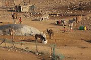 Israel, Negev Desert, Hovels in a Bedouin village