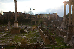 The Roman Forum, Forum Romanum, Forum Magnum or Forum was the central area around which ancient Rome developed, where commerce and the administration of justice took place. Ruins of the Roman Forum Rome, Italy December 1, 2007.